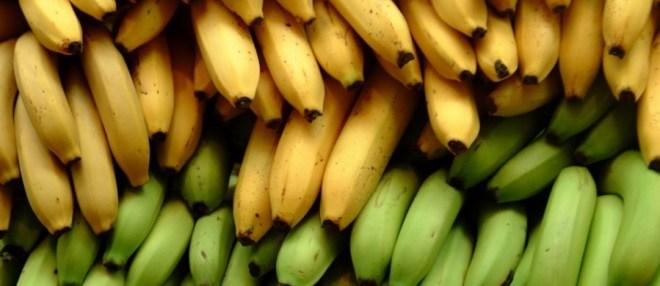 Банан (Кluai)