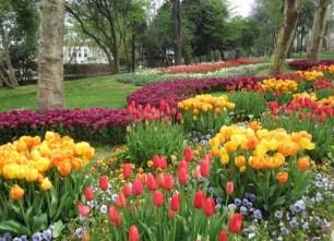 Парк Гюльханэ в Стамбуле
