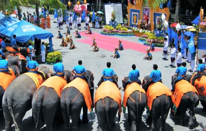 Тропический парк Нонг Нуч слони