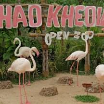 Национальный парк Кхао Кхео4