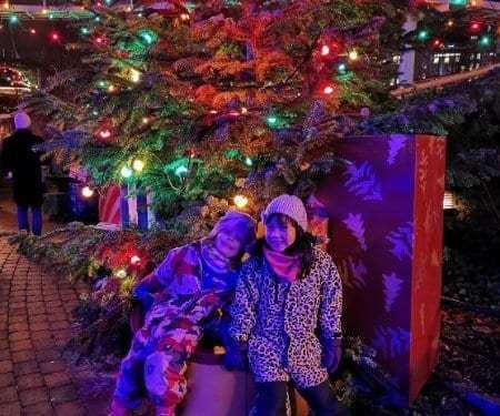 Julklappsjakt och Liseberg
