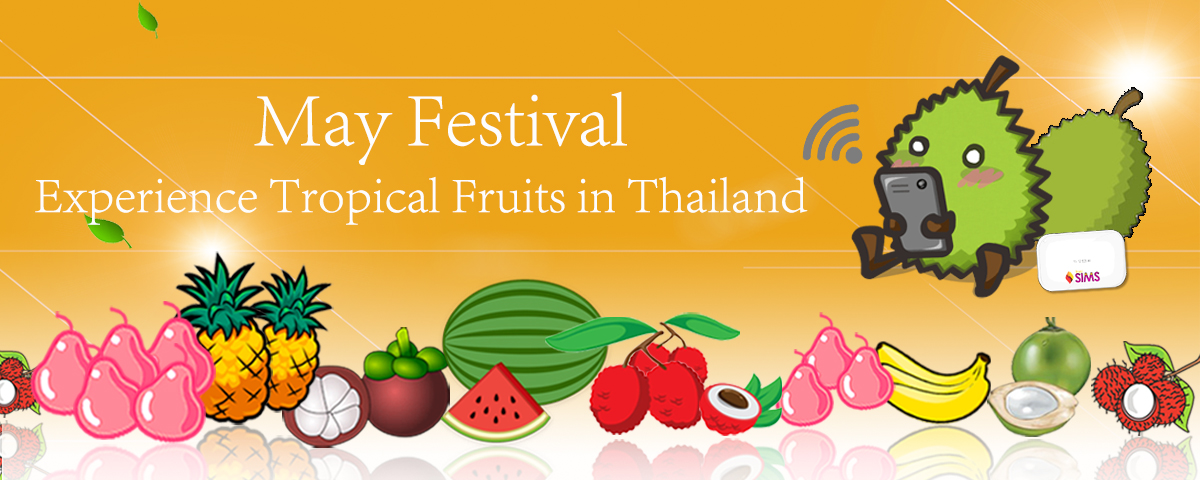 May Festival Experience Tropical Fruits in Thailand