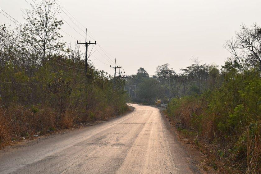 Outside from inside: A dreamy day safari in Khao Yai 2