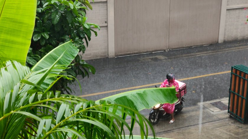 foodpanda rain
