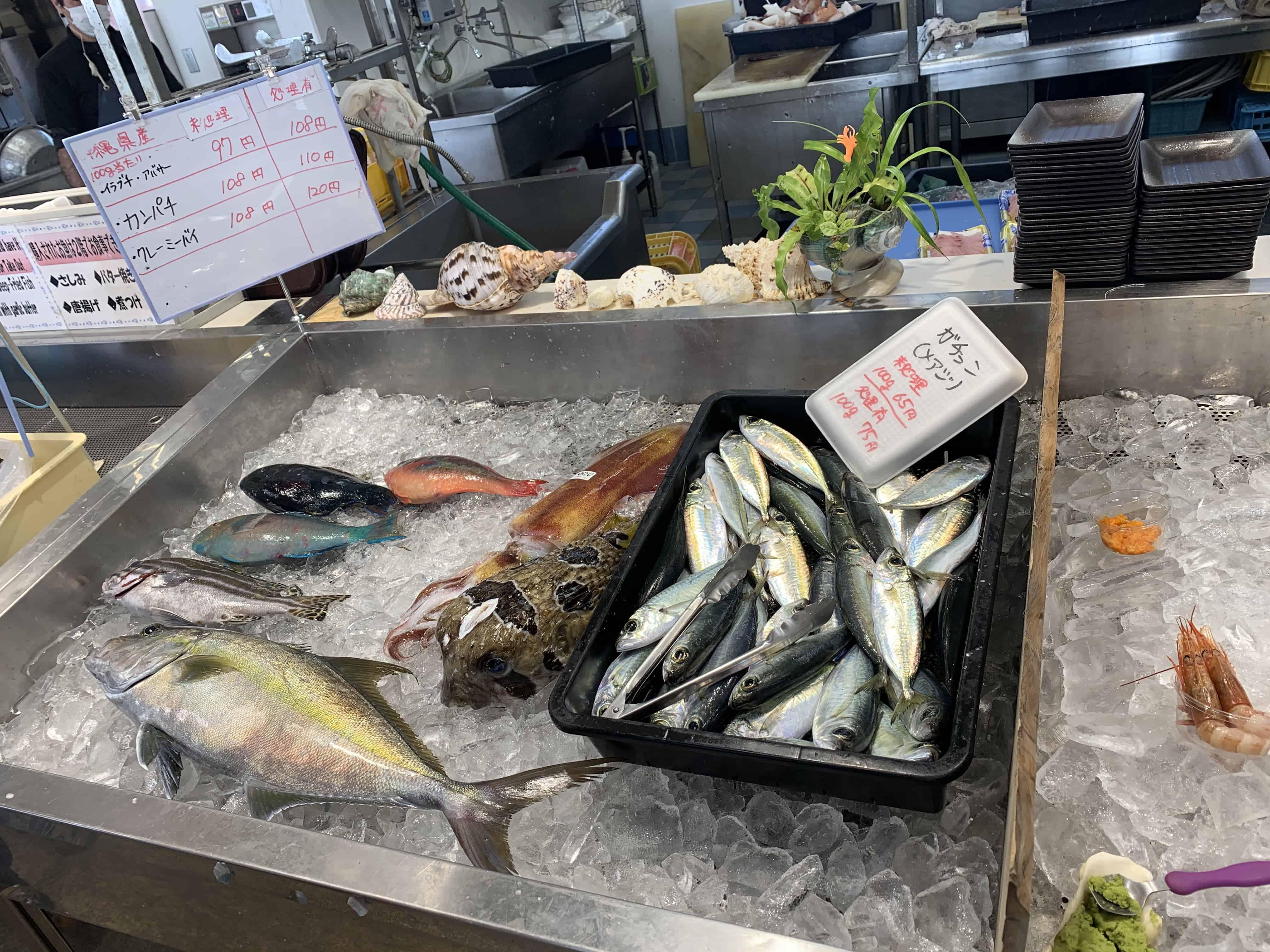 okinawa 4