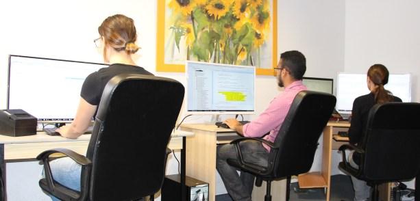 Hire Virtual Employee Team