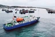 """Đưa vào sử dụng tàu khách Hoa Phượng Đỏ: Mang yêu thương đến """"đảo quê hương"""""""