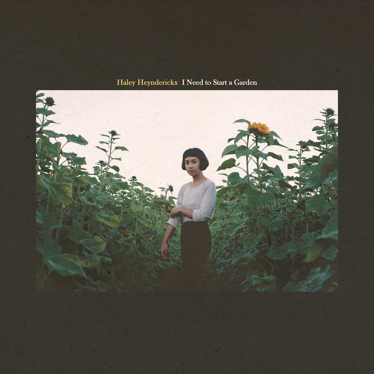 Album Review: Haley Heynderickx - I Need To Start A Garden