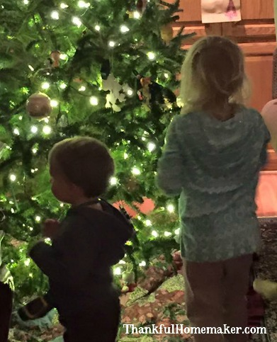 Two of my grandbabies helping decorate the tree this year.
