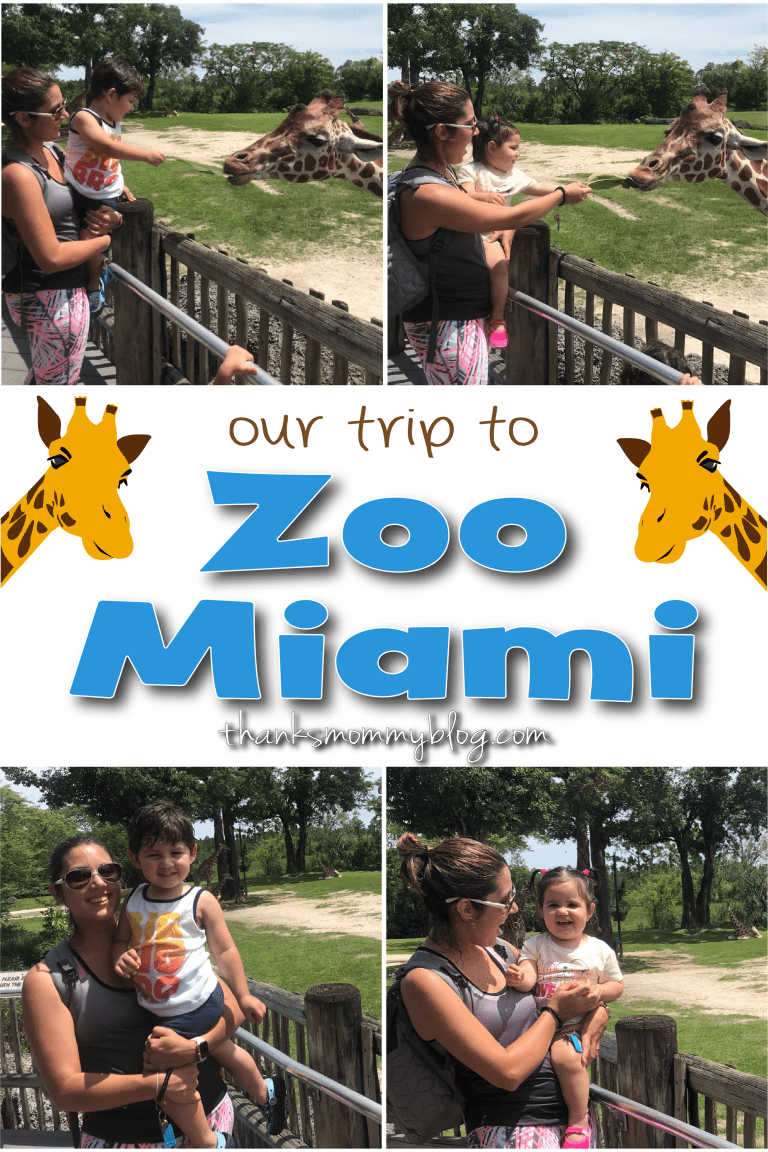 Zoo Miami with Toddlers