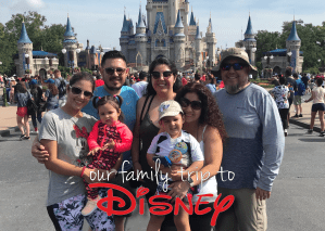 A Day at Disney World With Toddlers