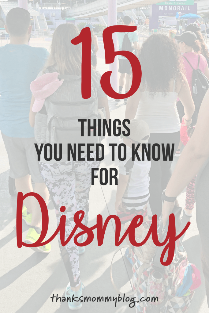 15 Things You Need to Know for Disney