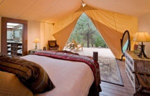 """Pitch a tent in the backyard and bring the bed and sofa out there? You may be a candidate for """"Glamping"""""""