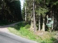 HM + 30 km - Strassenquerung an der Ernemannhuette