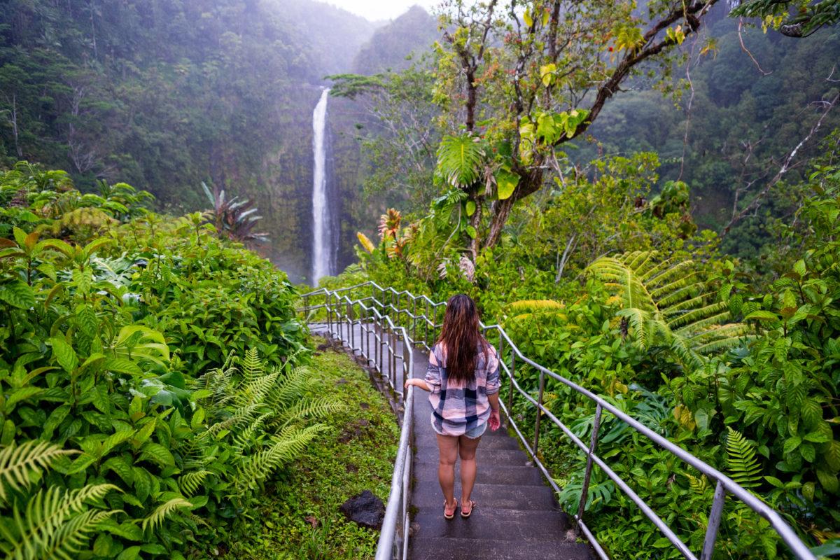Akaka Falls Hike Big Island Hawaii That Adventure Life