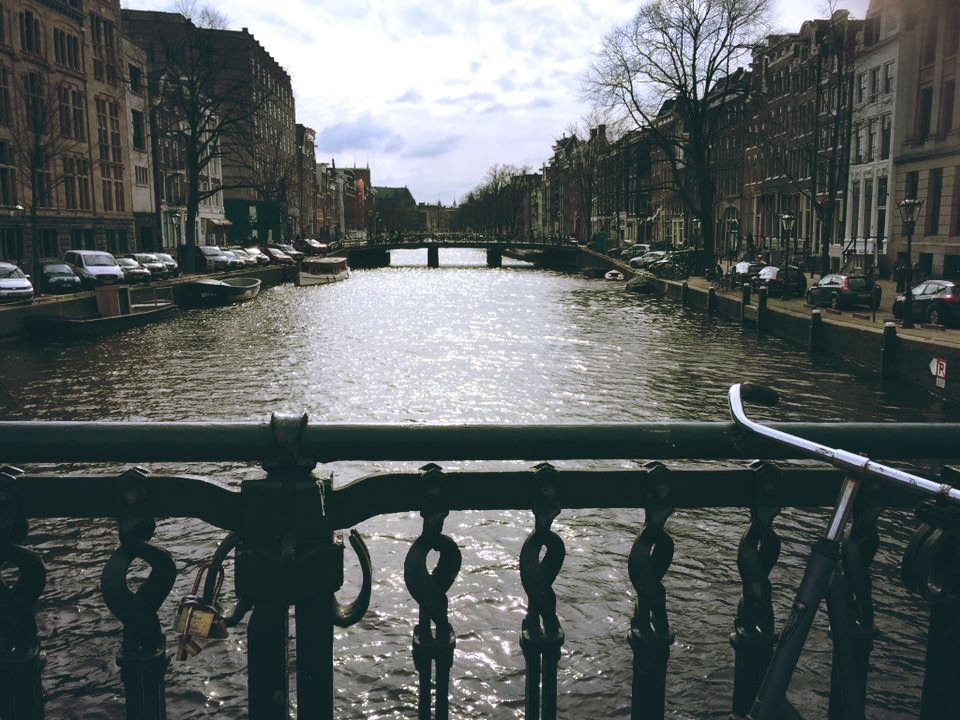 5 Tips To Know Before Visiting Amsterdam -Bicycles