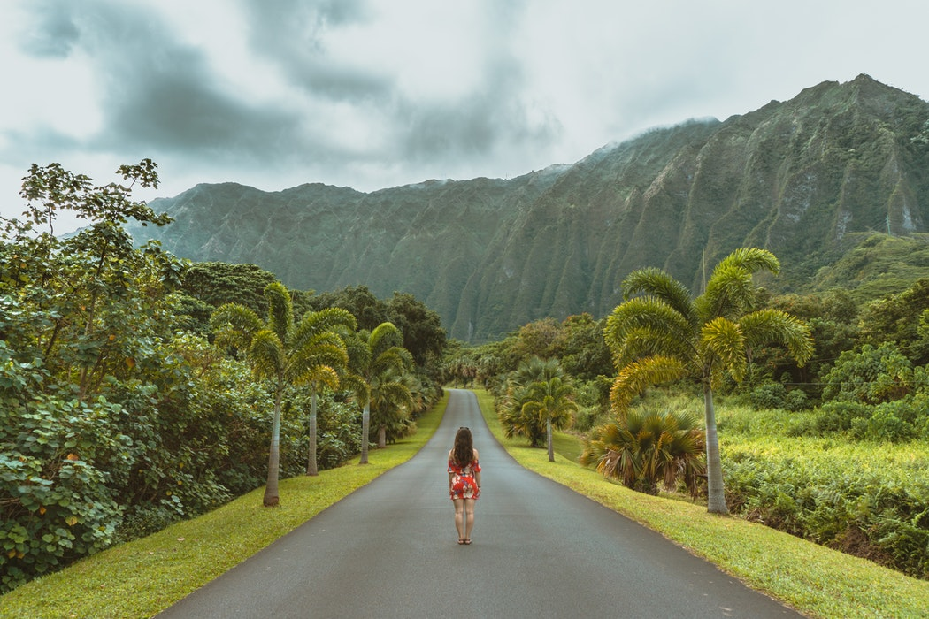 Hawaii Bucket List - Road
