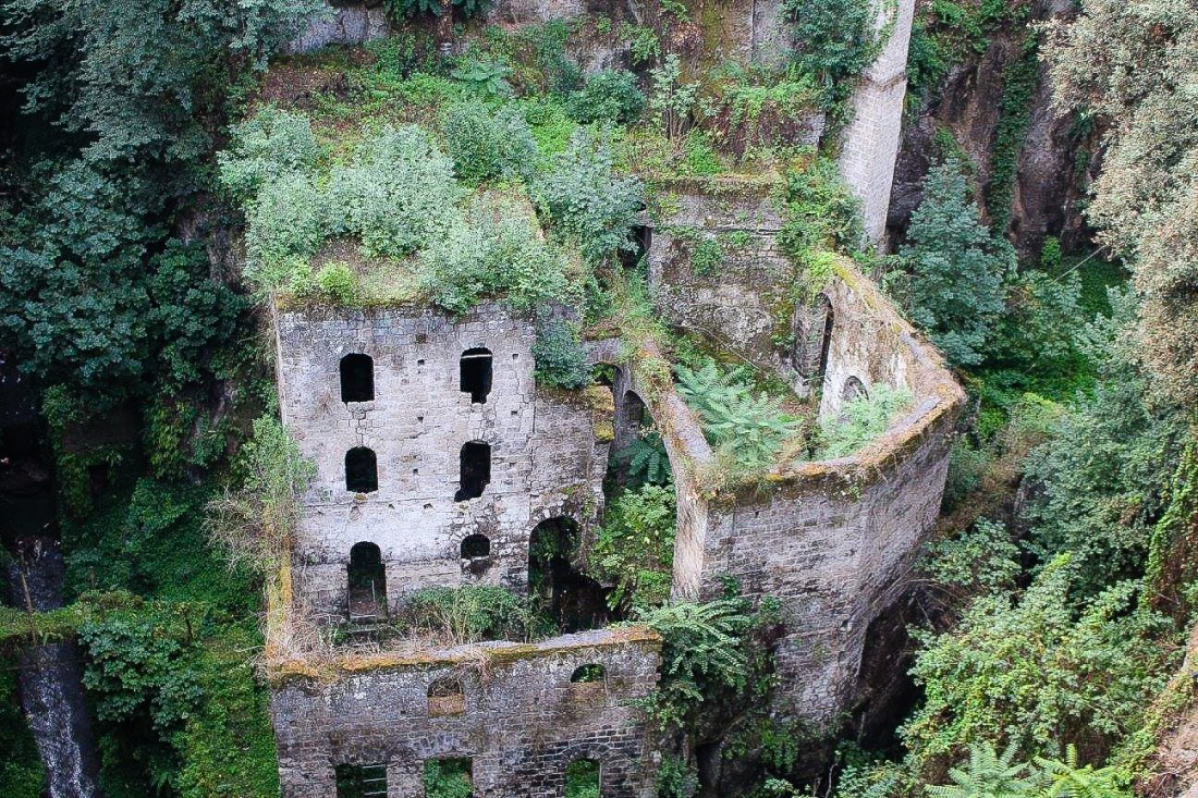 An abandoned mill building with plants growing over it