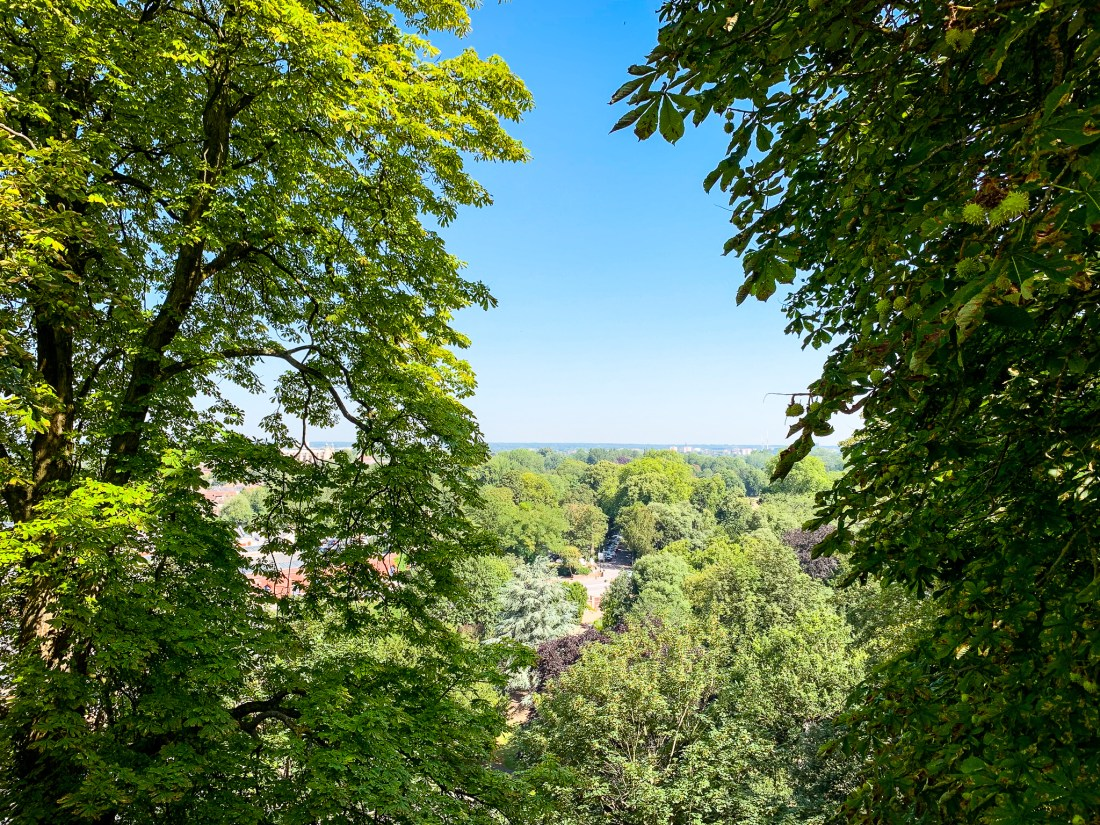 A view of trees and fields, taken from the wall of Windsor Castle. Day trips from London.