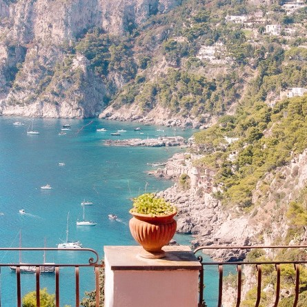 Via Tragara has some of the best views on the Amalfi Coast. A flower pot sits in front of a view of Capri's coastline.