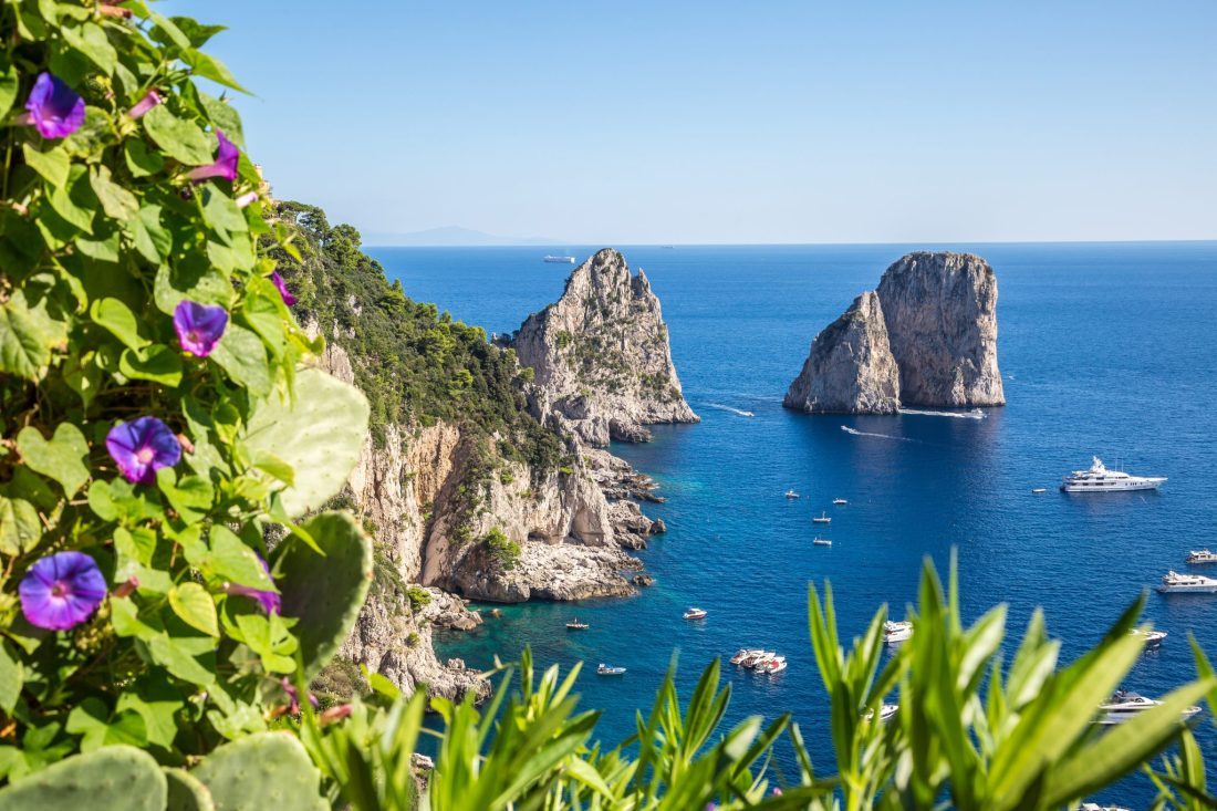 A view of the Faraglioni rocks with purple wildflowers in the foreground. These rocks are a Capri must-see, and high on the list of things to see in Capri