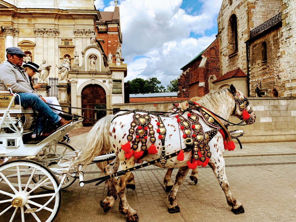 Two spotted horses pull a carriage. Horse rides are one of the most popular things to do in Krakow