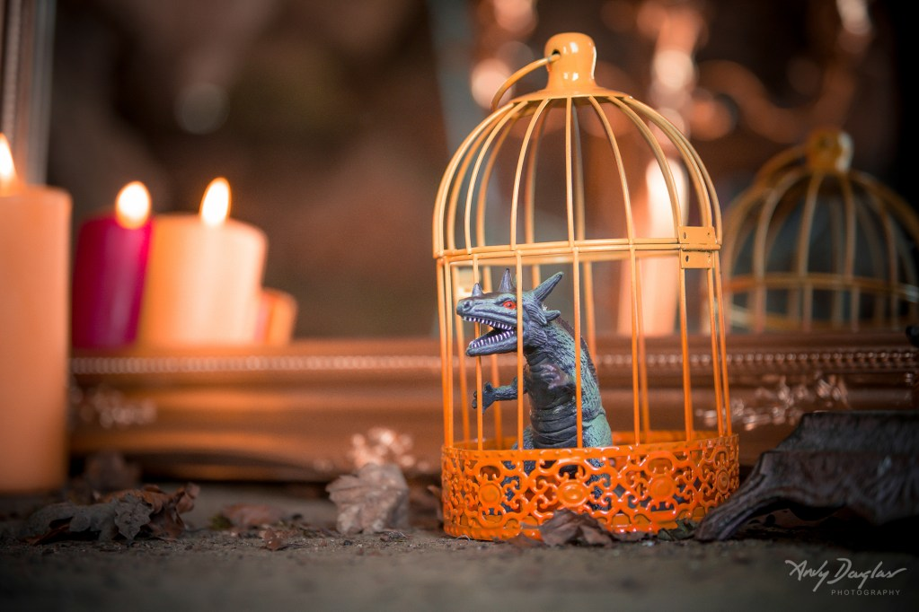 game of thrones wedding- dragon in cage with candle light