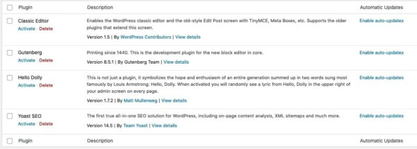 enabling auto-updates in WordPress 5.5