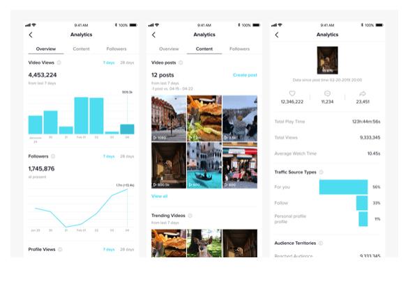 tiktok marketing pro account data example