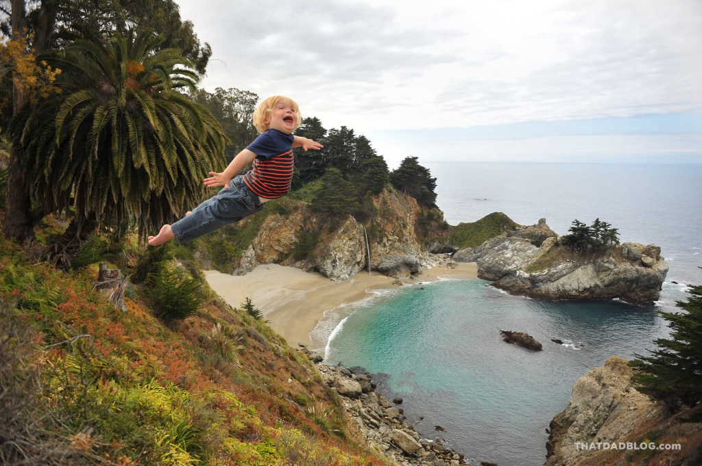 McWay Falls Wil Can Fly