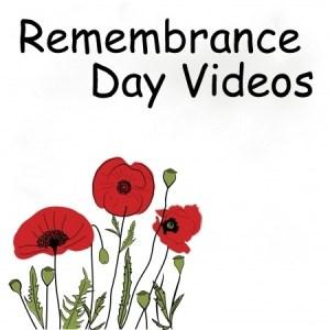 RememDay vid