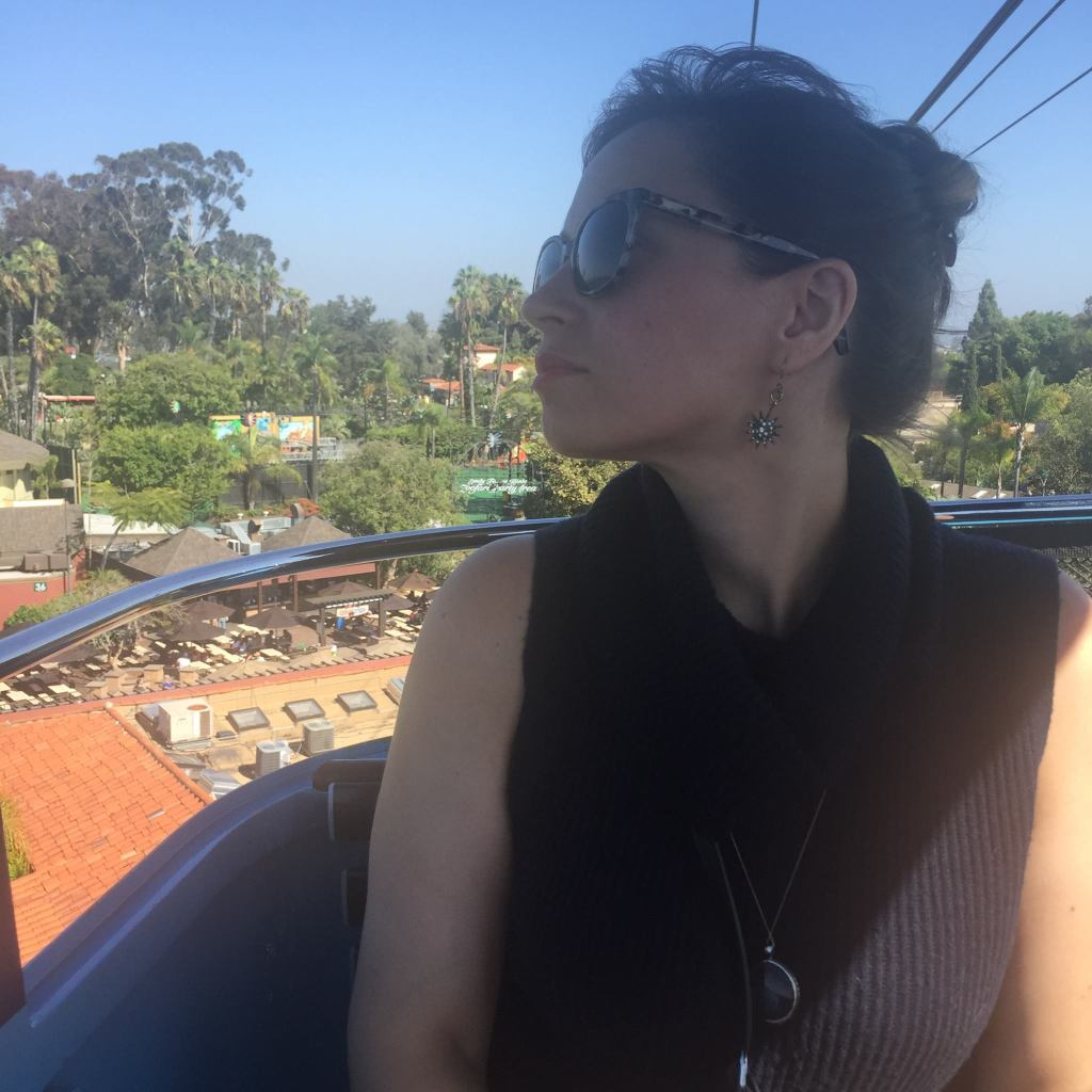 Me on the the Skyfari Aerial Tram at the San Diego Zoo (2016)