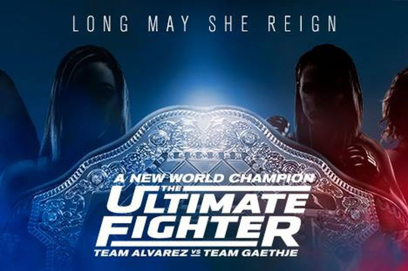 TUF 26 poster new champion alvarez vs gaethje