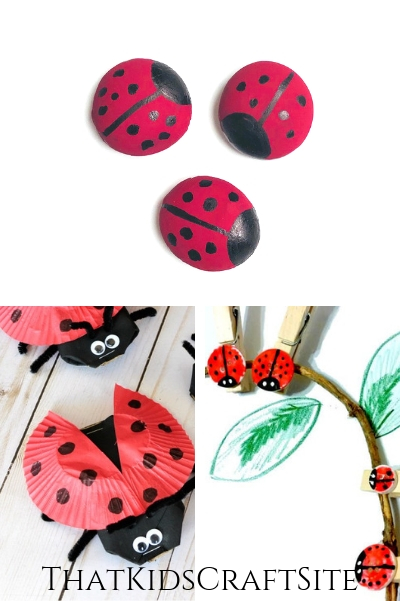 Paint a rock to look like a ladybug: 33 Cutest Ladybug Crafts For Kids That Kids Craft Site