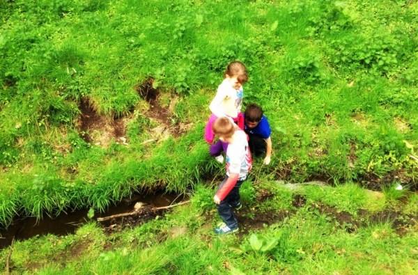 stream jumping