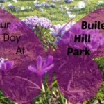 Buile Hill Park, Salford
