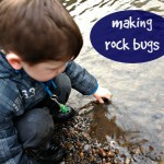 How to make rock bugs