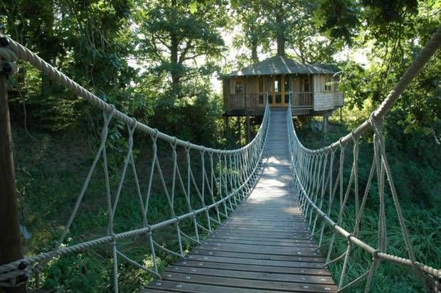 A treetop adventure, deep in the forest (photo courtesy of independent.co.uk)