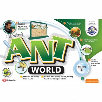 Ant World box