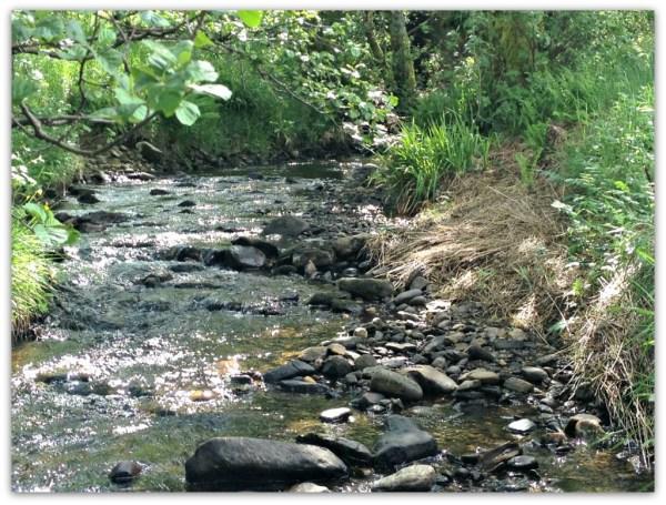 The beautiful stream feeding Loch Lubhair