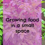 Things we're growing