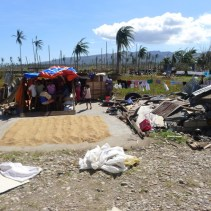 People of Cateel, Davao Oriental tried to save what is left of their harvest - and themselves.