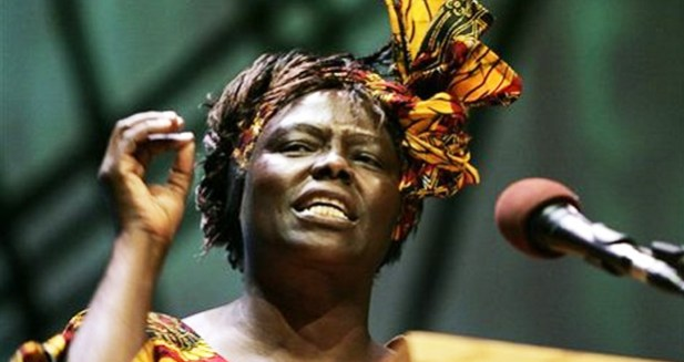 Professor-Wangari-Maathai