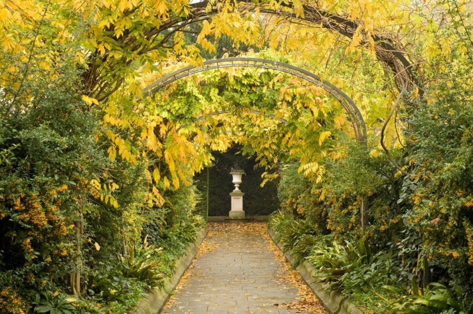 path under vine trellises and arches in Regents park