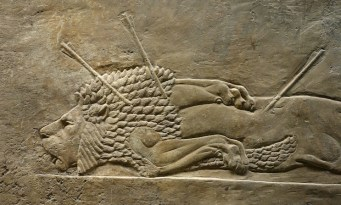 Lion killed by arrows, Assyrian Lion Hunt frieze, British Museum