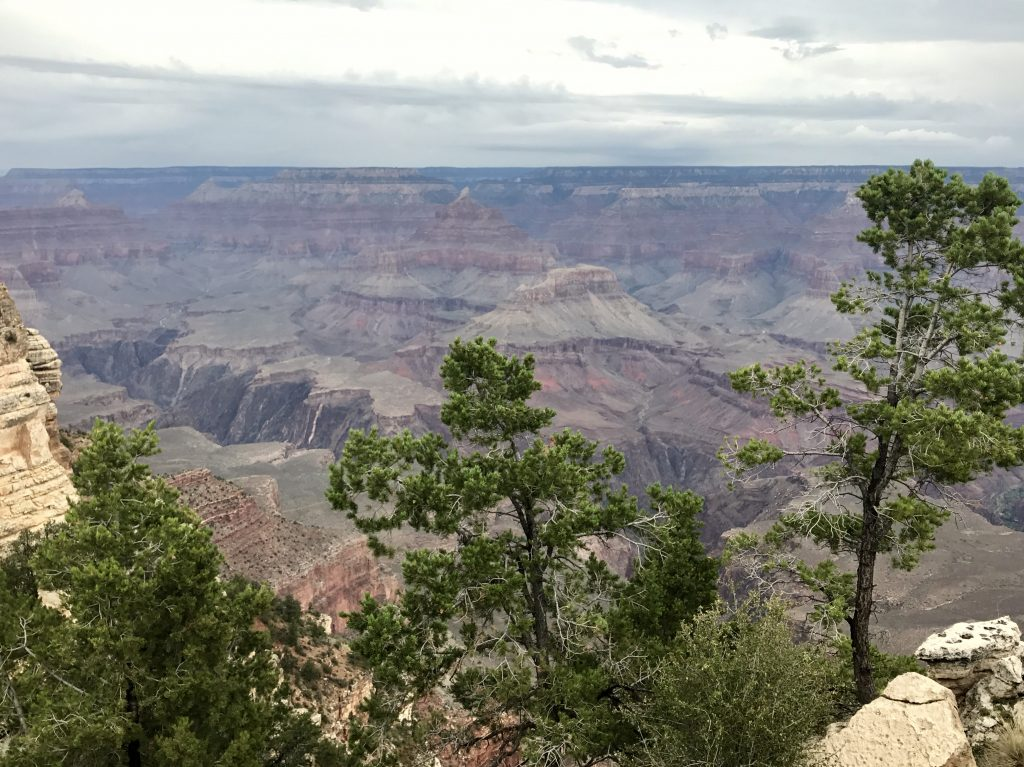 National Parks in Amerika: Grand Canyon