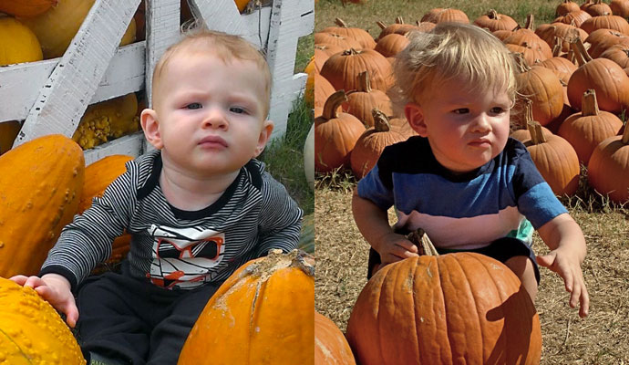 Year to year pumpkin patch comparison