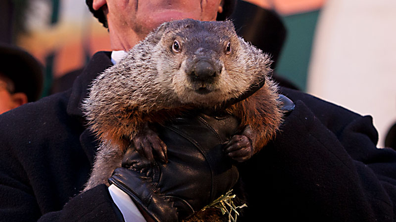 Ground Hog day in Punxsutawney (photo by Anthony Quintano - creative commons)