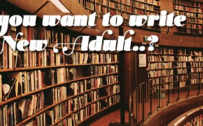 Write New Adult