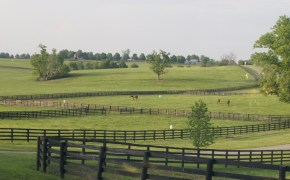 Lexington Kentucky